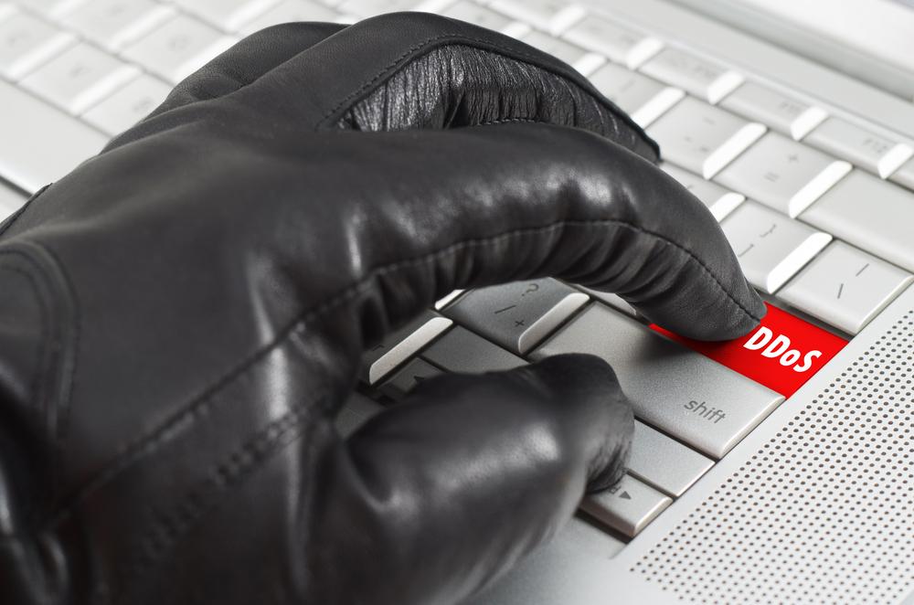 The Consious Reporter has been facing DoS cyber attacks